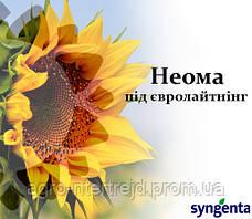 Насіння соняшнику НК Неома Сингента під Євро Лайтінг