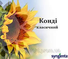 Насіння соняшнику НК Конді Сингента