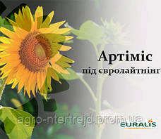 Насіння соняшнику ЄС Артимис Євраліс Семанс