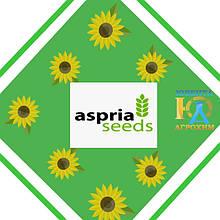Насіння соняшнику Aspria Seeds