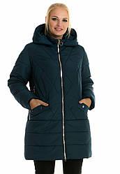 Жіночі куртки зима великого розміру 50,52 малахіт