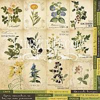 Карточки для декора №3 Botany summer (укр)