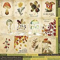 Карточки для декора №1 Botany autumn (рус)