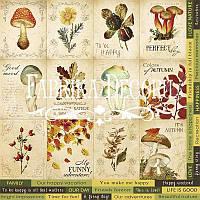 Карточки для декора №2 Botany autumn (англ)
