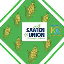 Насіння кукурудзи Saaten Union