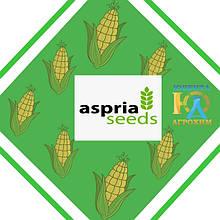 Семена кукурузы Асприя Сидс (Aspria Seeds)