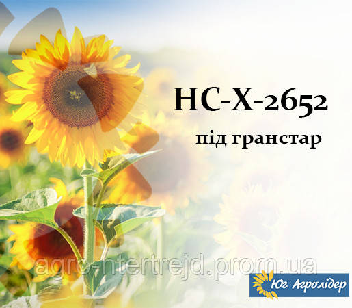 Семена подсолнечника НС Х 2652 Фр. Экстра 3,0-3,5