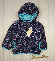 Куртка демисезонная на холлофайбере на девочку 2-5 лет, фото 1