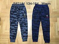 Спортивные утепленные штаны на мальчика оптом, Grace, 134-164 см,  № B82181, фото 1