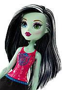 Кукла Монстер Хай Фрэнки Штейн Командный Дух Бюджетная Monster High Ghoul Spirit Frankie Stein Doll, фото 3