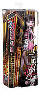 Кукла Monster High Дракулаура серия бу Йорк  Boo York, Boo York Frightseers Draculaura, фото 5