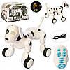 Собака 6013-3  р/у,аккум, 23см, муз,звук, свет,ездит, танцует, USBзар,в кор-ке,36-25,5-23см