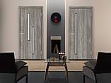 Двери межкомнатные Омис Т 02 со стеклом экошпон , цвет дуб денвер, фото 2