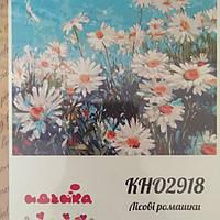 Розпис по полотну 40*50 Идейка Роспись по номерам Картины по номерам КН02918 Ромашки