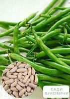 На развес Фасоль 'Спаржевая зеленая ' ТМ 'Весна' цена за 15г