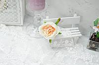 Головка троянди Д. Остіна . крем