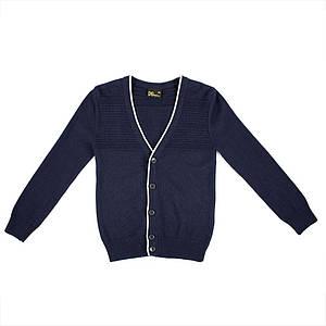 Джемпер для мальчиков Deloras 134  синий M70039