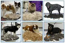 Фурминатор для кошек и собак  L  10,16см, фото 2