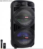 Аккумуляторная акустика TMS-208A + радиомикрофон