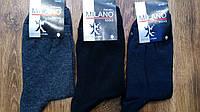 """Чоловічі стрейчеві шкарпетки""""MILANO""""(40-45) асорті 1"""