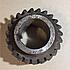 Шестерня низшей передачи (Z-23 зуб. Н-80 mm) КрАЗ 210Д-1802040, фото 2