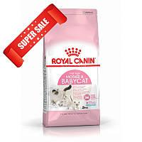Сухой корм для котов Royal Canin Mother & Babycat 2 кг + 2 консервы