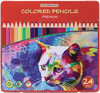 Кольорові олівці Premium