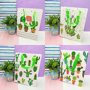 Пакеты для подарков | Пакеты бумажные подарочные | Подарочный пакет Cactus (выбор дизайна)