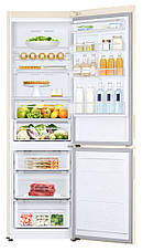 Холодильник Samsung RB34N5440EF / UA, фото 3