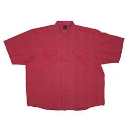 Мужские рубашки большого размера с коротким рукавом