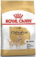 Сухой корм для собак Royal Canin Chihuahua Adult  (Роял Канин Чихуахуа), 0,5 кг