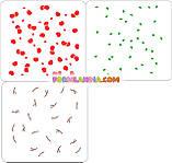 Набор трафаретов для пряников Вишни - 3 шт, фото 2