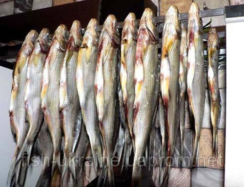 Рыба вяленная, лещ - Рыбоперерабатывающий Комбинат в Черкассах