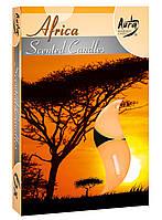 PL -Африка-свечи-арома -таблетки-чайные. 4 h 6 шт.