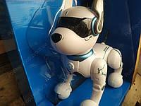 Детская собака-робот интерактивная с голосовыми командами (англ.)