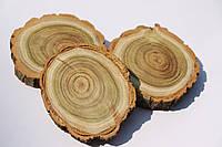 Срез дерева. Акация 9 - 10 см с трещиной, фото 1
