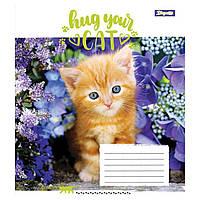 Тетрадь 1 Вересня 18 листов клетка Hug Your Cat (25) (400) №762299