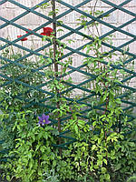 Решетка садовая 1х3м белая,зеленая опора для растений