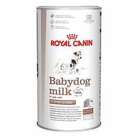 Royal Canin babydog milk  - 2 кг (заменитель молока)