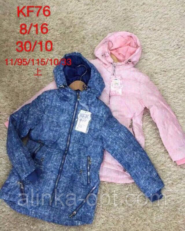 Курточка для девочек S&D оптом , 8-16 лет.