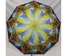 Жіночий парасольку автомат Calm Rain осінь а490/2