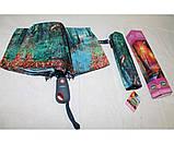 Жіночий парасольку автомат Calm Rain осінь а490/2, фото 8