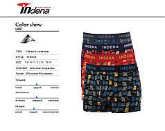 Підліткові стрейчеві шорти на хлопчика Марка «INDENA» арт.85533