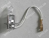 Автолампа для пневмонагнітача (бетононасоса/ розчинонасоса)