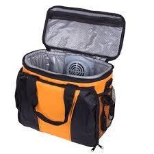 Холодильник сумка для автомобиля Froster BL 302 15л 12В