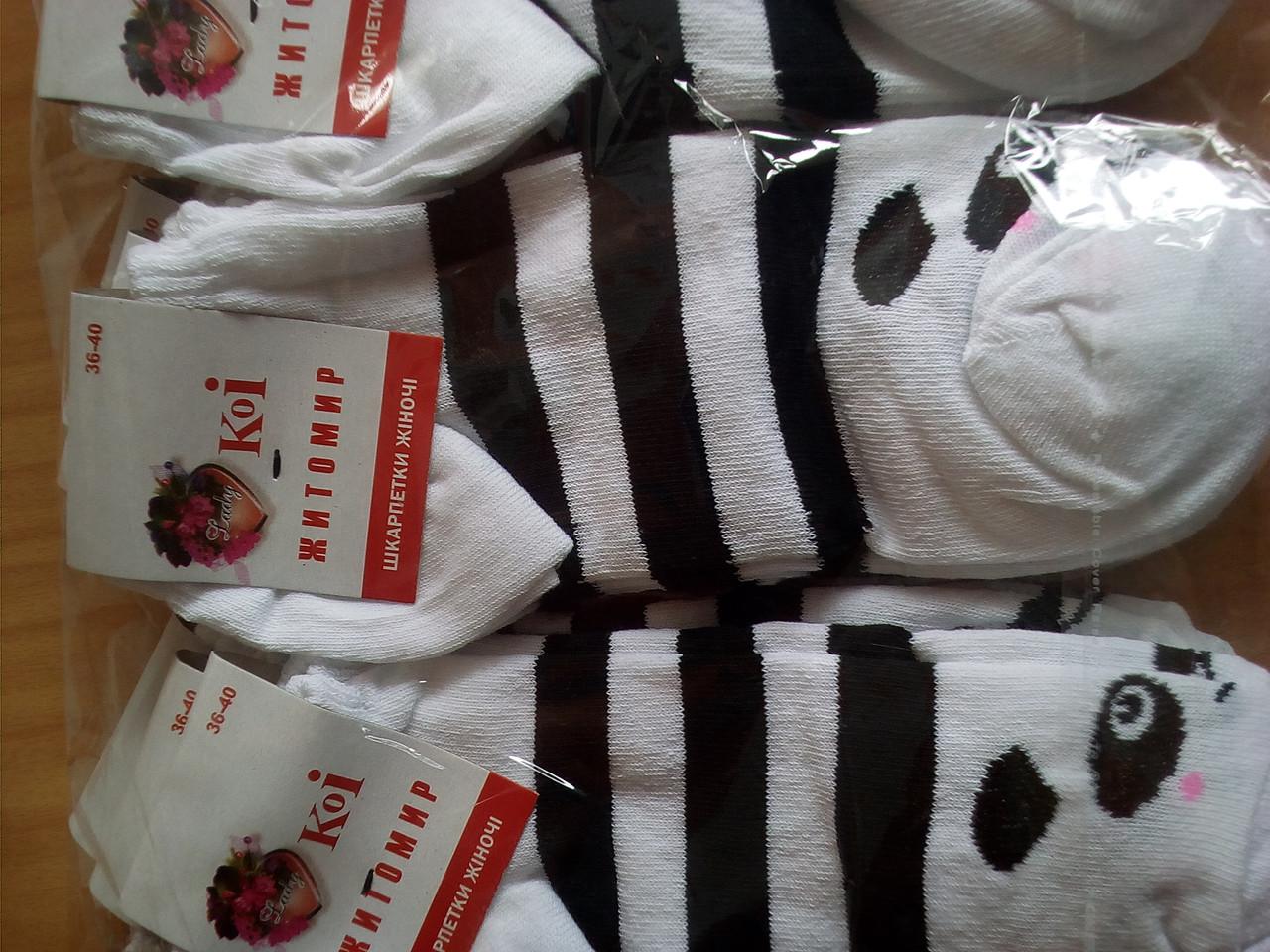 Носки женские средние с пандой