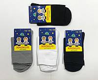 Носки детские-подростковые демисезонные хлопок Житомир ТМ Крокус размер 18-20(29-31) ассорти, фото 1