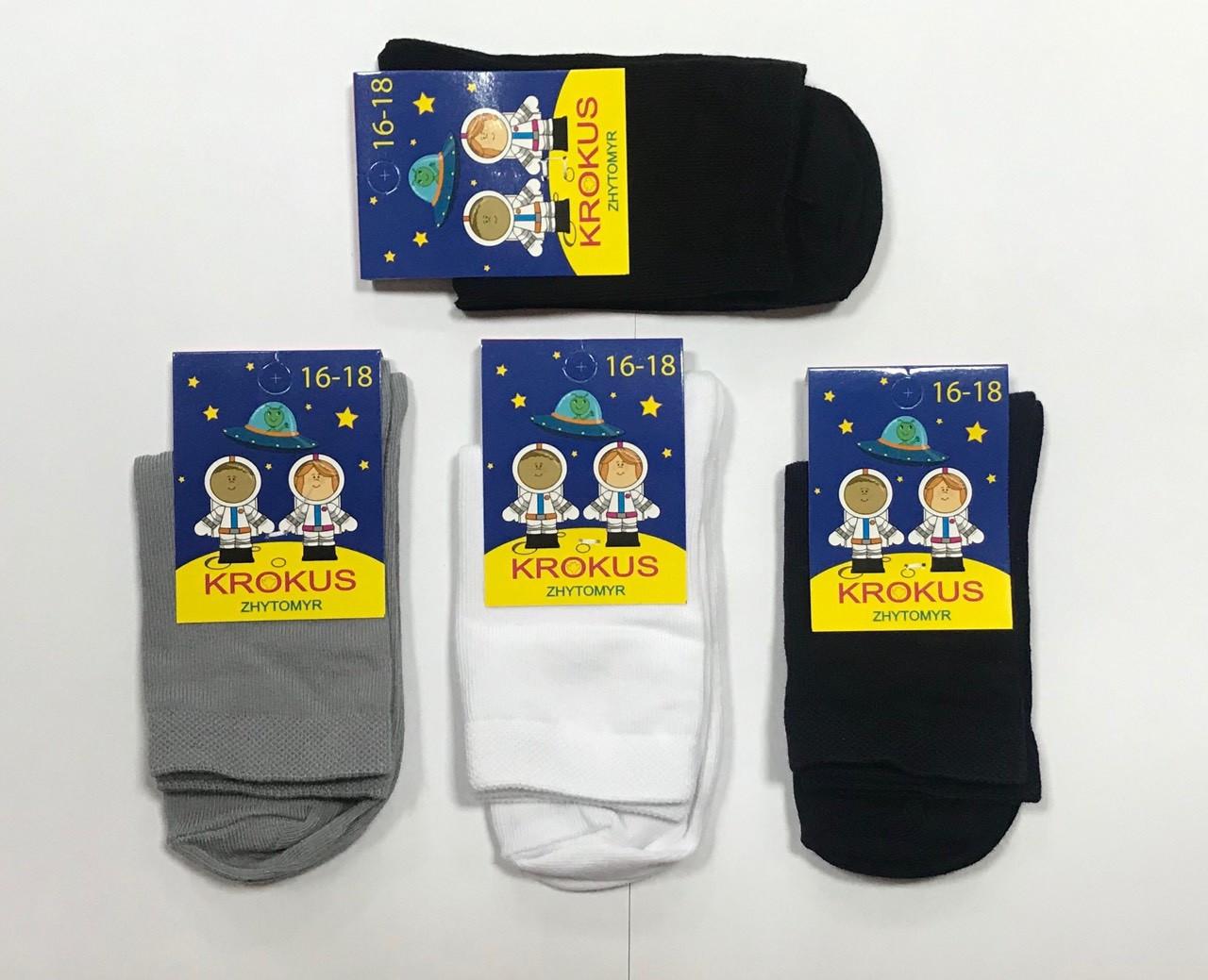 Носки детские-подростковые демисезонные хлопок Житомир ТМ Крокус размер 20-22(32-34) ассорти