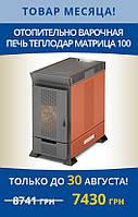 Печь отопительно-варочная Теплодар Матрица 100  (50 -  100 м3), фото 1