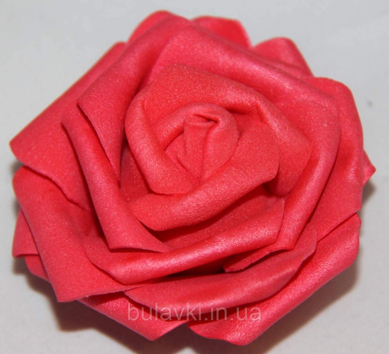 Роза красная   2017-1-17-1 (средняя)